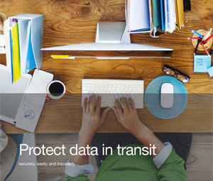 Datasheet Protect data in transit